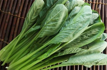 Japanischer Spinat ist anfällig gegenüber Hitze