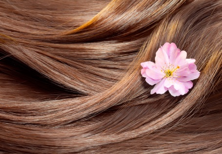 Gutes Olivenöl als Haarpflege hat viele Vorzüge
